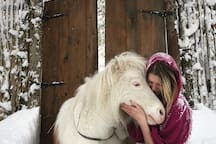 Candace and our mini horse Henry, the star of our Haunted Woods show where he plays a mythical unicorn.