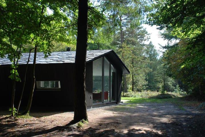 Boshut-Vierhouten (Veluwe bij Nunspeet) - Vierhouten - Villa