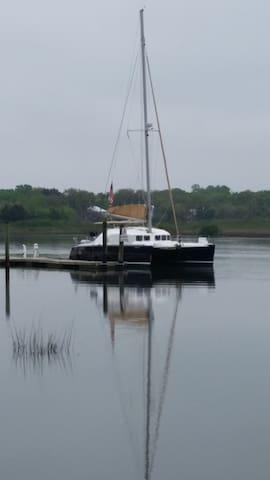 Bliss - 40' sailing catamaran - Boca Raton - Bateau