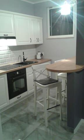 Nice flat or room to rent - Kraków
