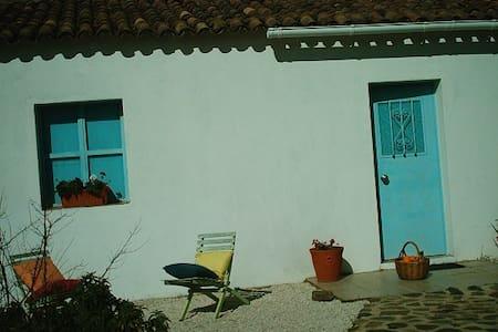 Algarve mountain retreat cottage - São Bartolomeu de Messines - Haus
