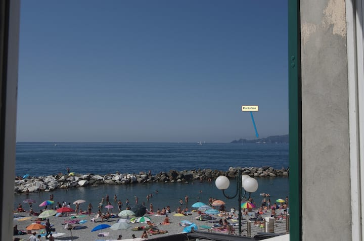 Mare fronte Portofino Codice CITRA 010015-LT-0060