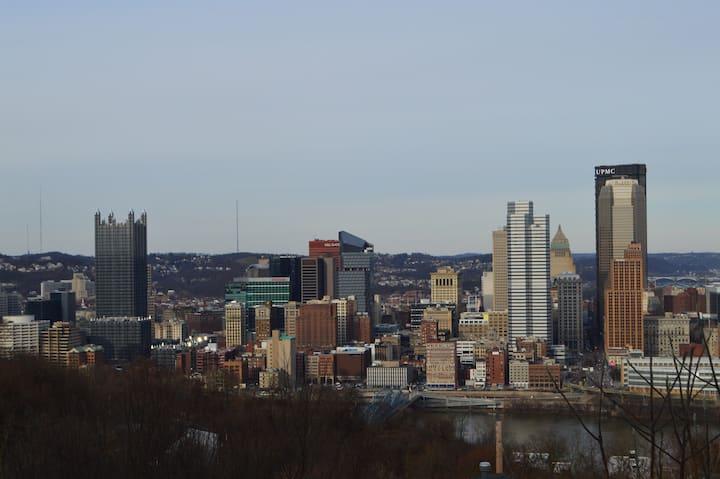 Pittsburgh Skyline Views - Luxury 1 Bedroom #2