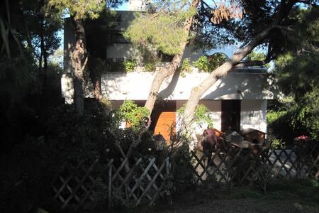 House close to Attiki east coast & Athens airport - Chamolia