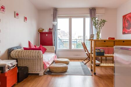 Joli appartement - Colmar
