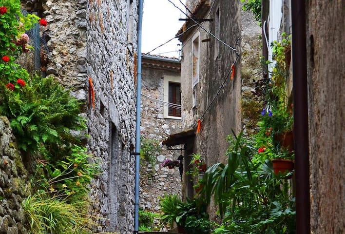 RELAX IN BORGO - Castro dei Volsci - House