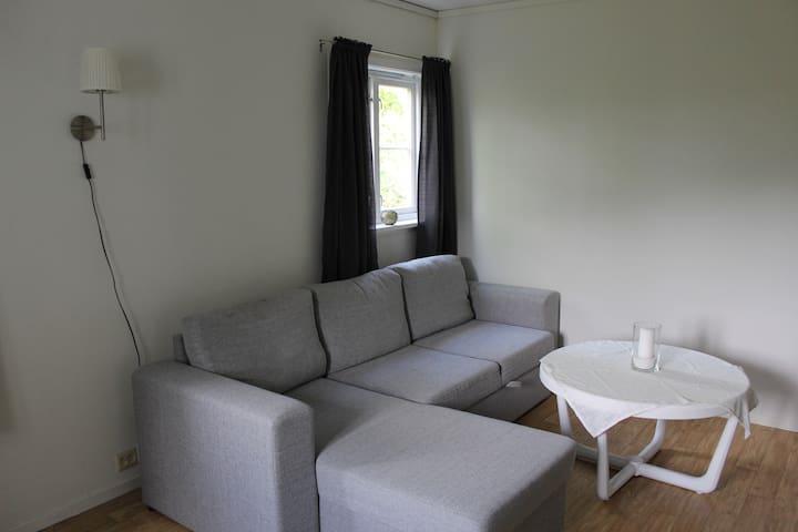 2-roms leilighet nær Dyreparken (1)