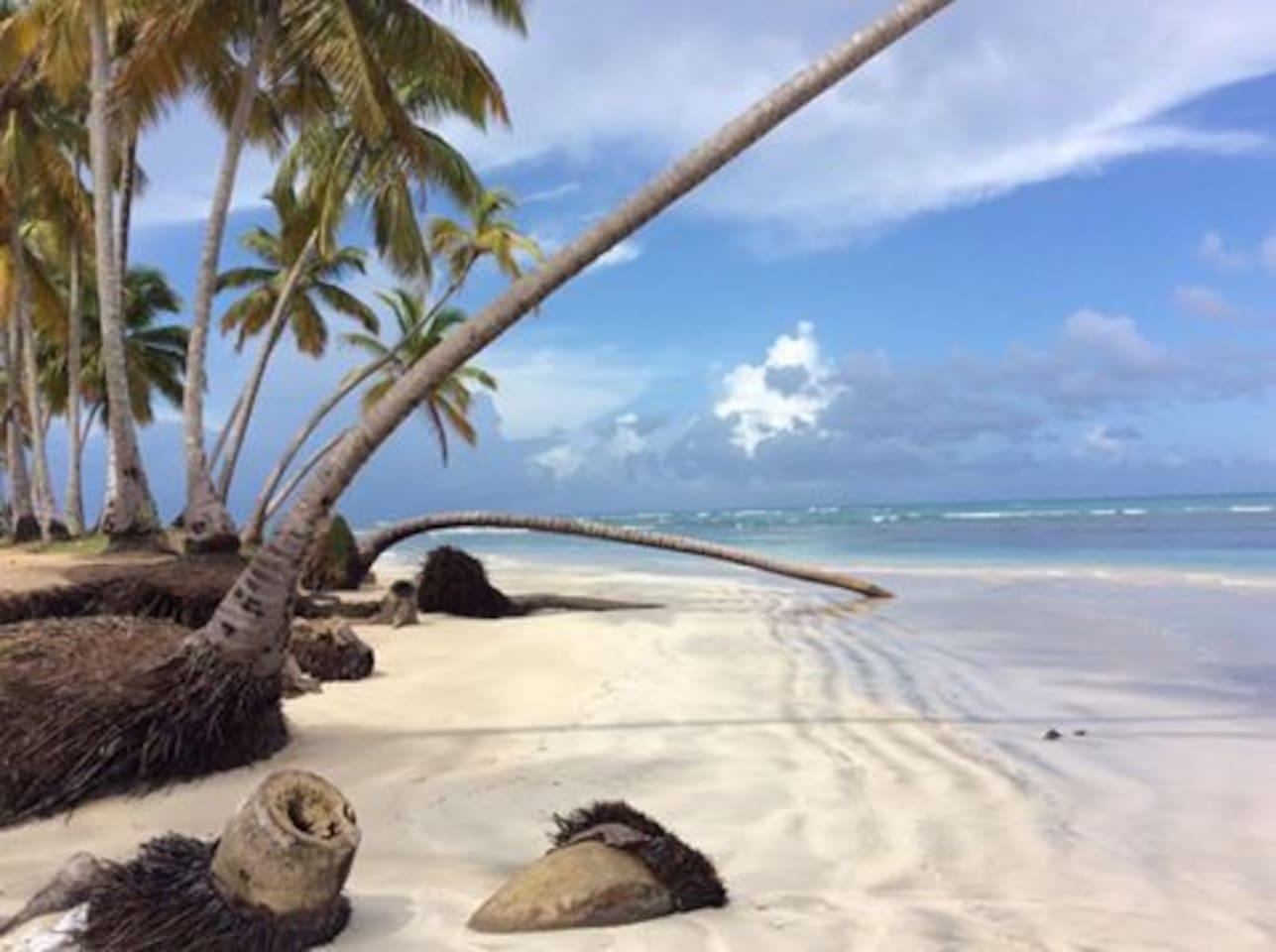 Superbe plage à 2 pas de la Casa Alegria