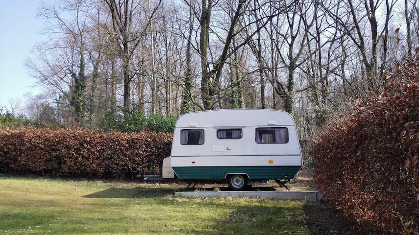 Naturehome - Rotselaar - Campingvogn