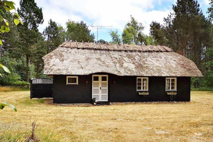 Romantisches Ferienhaus in Lolland mit Terrasse
