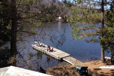 Lakeside 4 season chalet w/ hot-tub; dogs welcome! - La Conception/Tremblant - Cabane