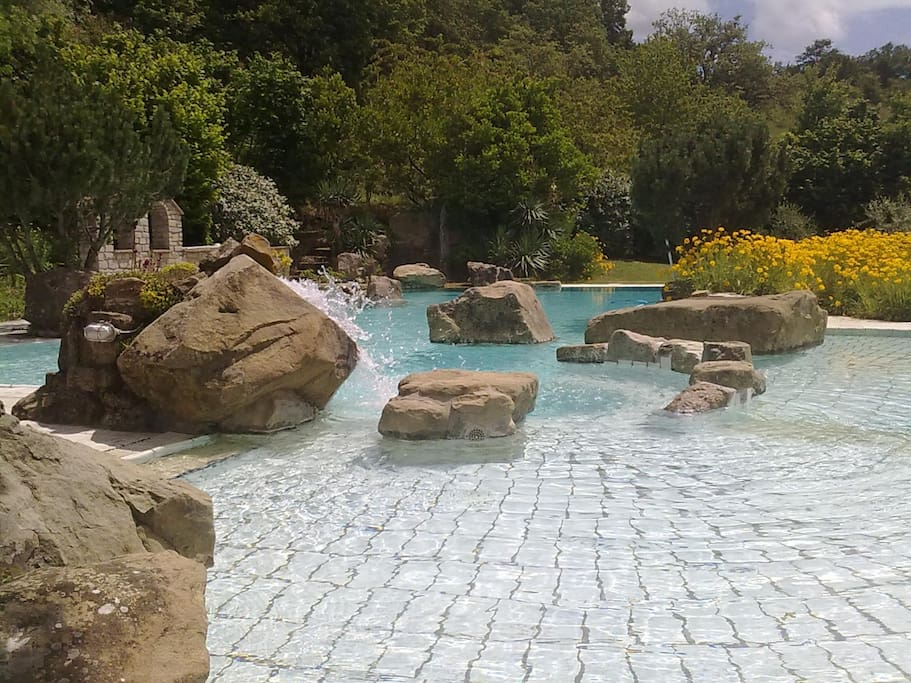 Pool with natural rock