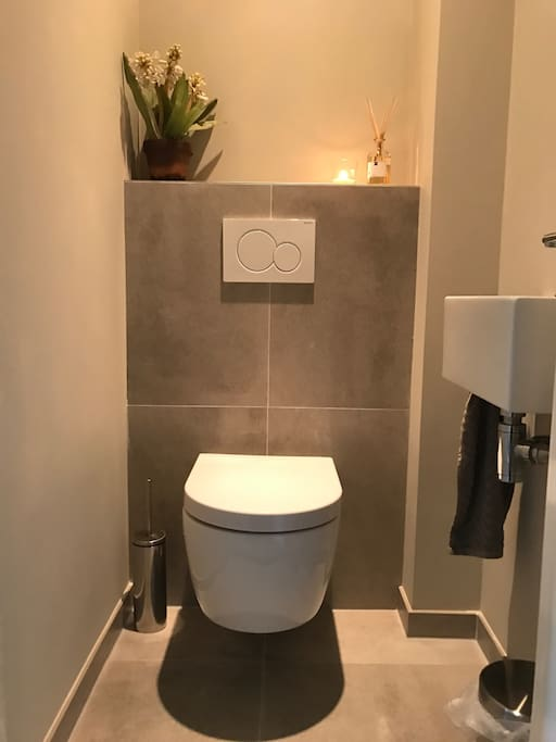 Newly renovated toilet