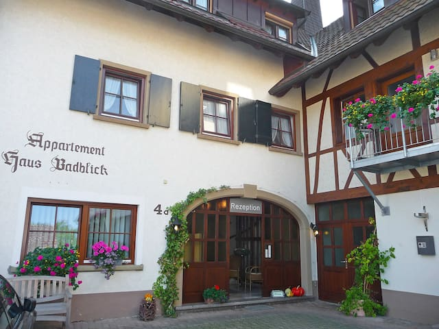 50 m² 2-room apartment Badblick for 4 persons in Bad Bellingen - Bad Bellingen - Daire