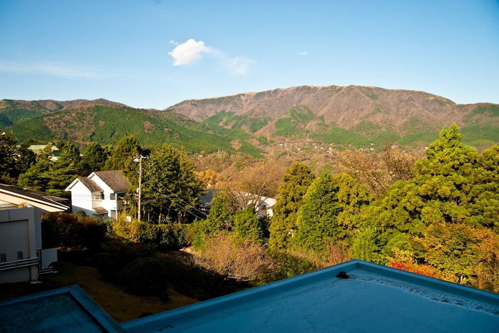 Mountain view from your private room.