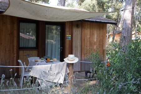 Chalet for 2 pers in Castagneto Carducci R81394