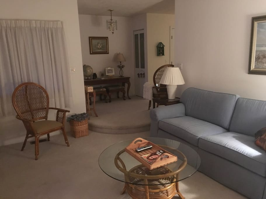 Living room has large comfortable couch and plenty of room for seating.