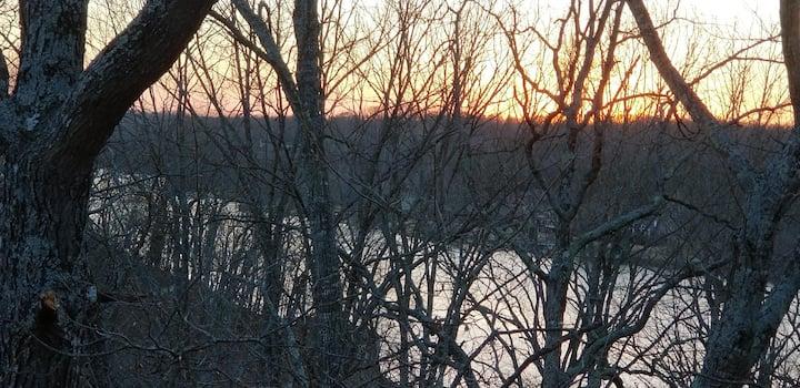 Cozy hideaway nestled among trees on lake Windsor
