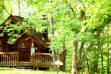 Rustic Mountain Hot Tub Cabin - Sevierville - Cabane