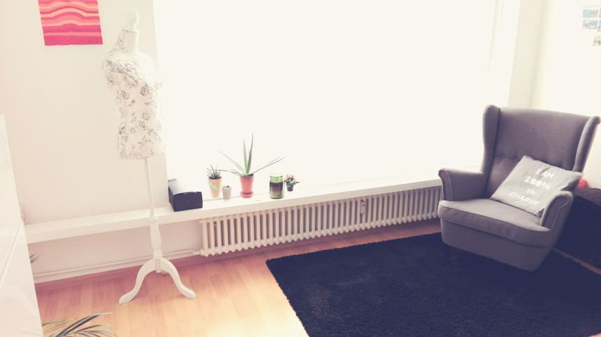 Bright and modern apartment - บาเซิ่ล - อพาร์ทเมนท์