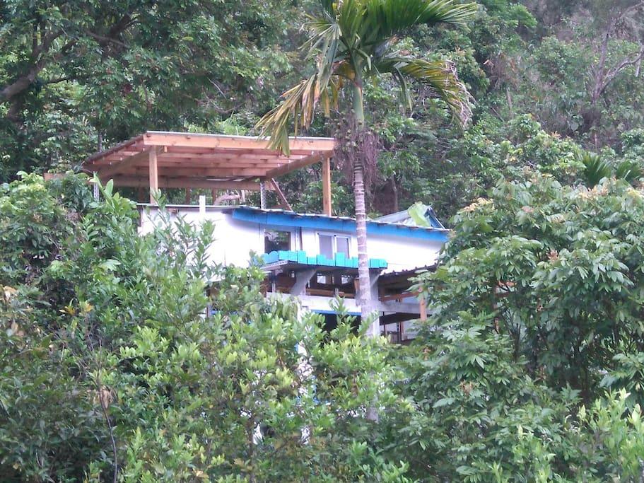 增建中二期樹屋
