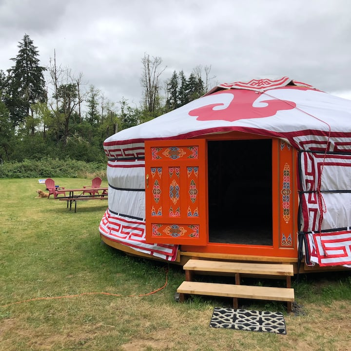 Authentic Mongolian Yurt Stay Near Lewis River