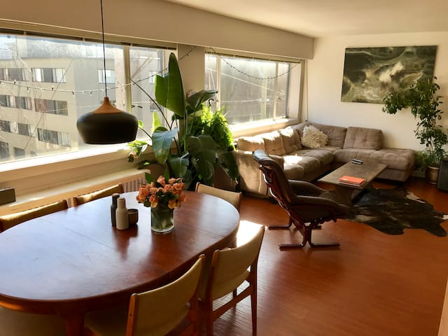 Bright and beautiful 1 bedroom apartment