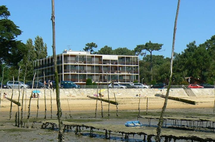 Accès direct plage à L'Herbe Cap Ferret - Lège-Cap-Ferret - Apartmen