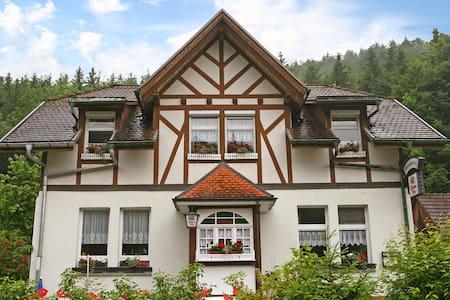 Apartment Wutachschlucht for 6 persons in Stühlingen - Stühlingen - Pis