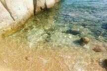 Explore the beautiful Gavriadia coast in front of the villa