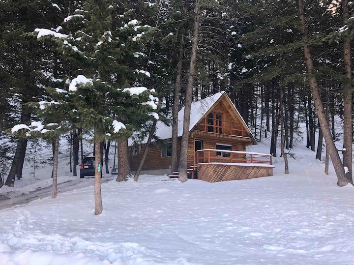 Board Ranch Cabin