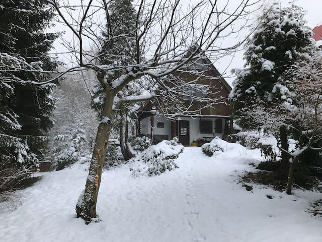Domek nad jeziorem - Kaszuby - Brodnica Górna
