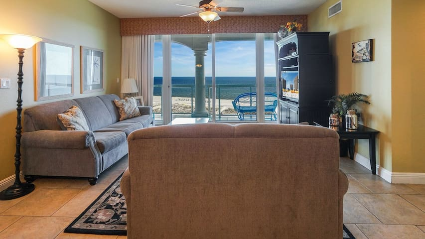 Watch the dolphins from the living room!