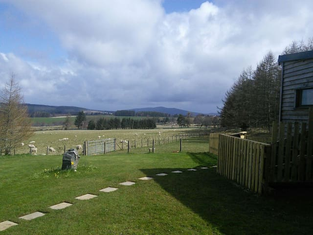 Wooden cabin with great views - Aberlour - Bed & Breakfast