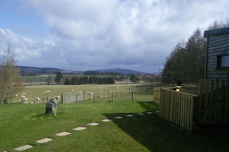Wooden cabin with great views - Aberlour