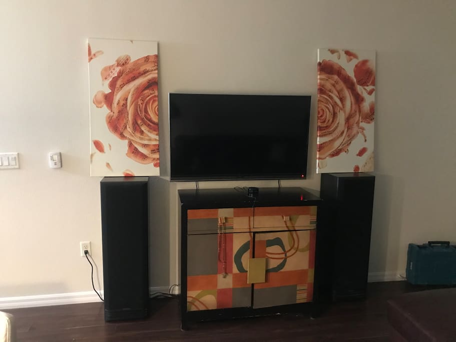 Television/Stereo system/cable TV