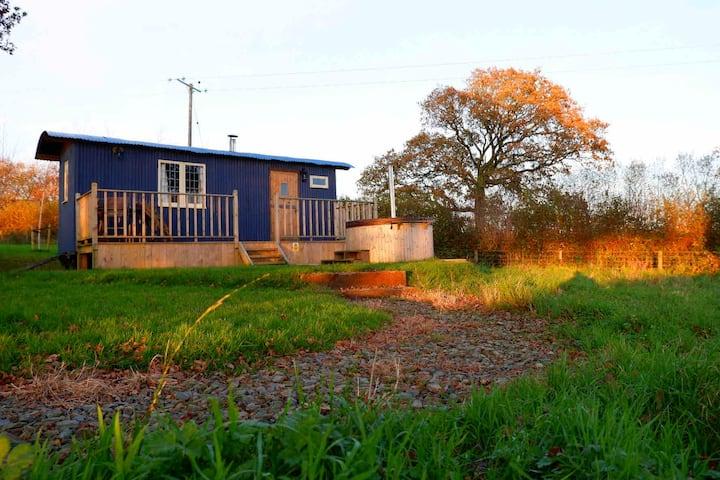 Leworthy manor shepherds hut