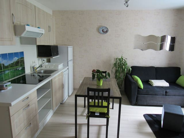 LE COCOONING-PARKING-CTRE VILLE-2* - Dijon - Apartment