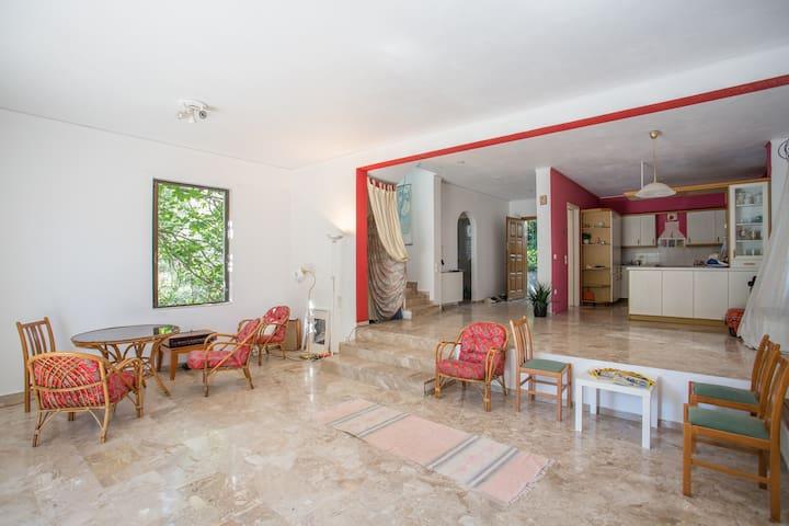 villa in lovely greenery - Rafina - House