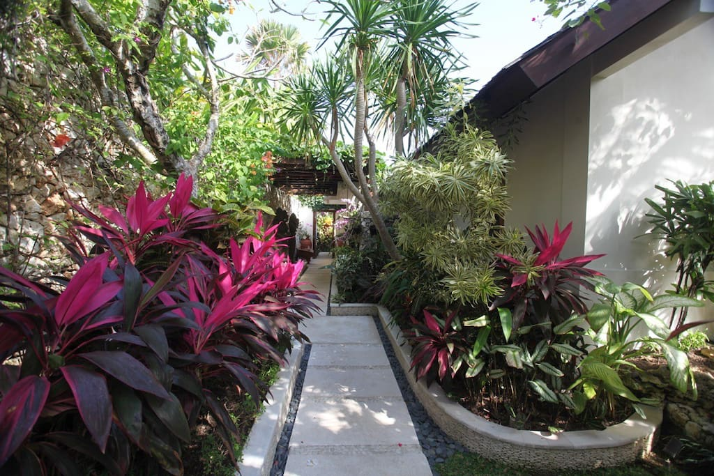 Lush Tropical Front Entrance , with rare exotic orchids and manicured gardens.