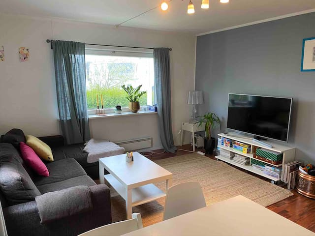Central spacious apartment, free parking
