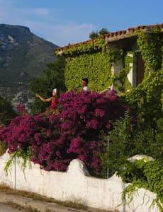 Villa a Cala Gonone - Cala Gonone