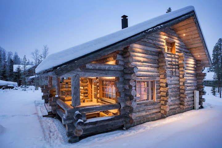 Elegant and Cosy Log Lodge Villa Aurora