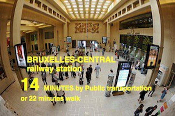 Bruxelles-Central is NOT the main railway station. Most of the international trains do NOT stop here.