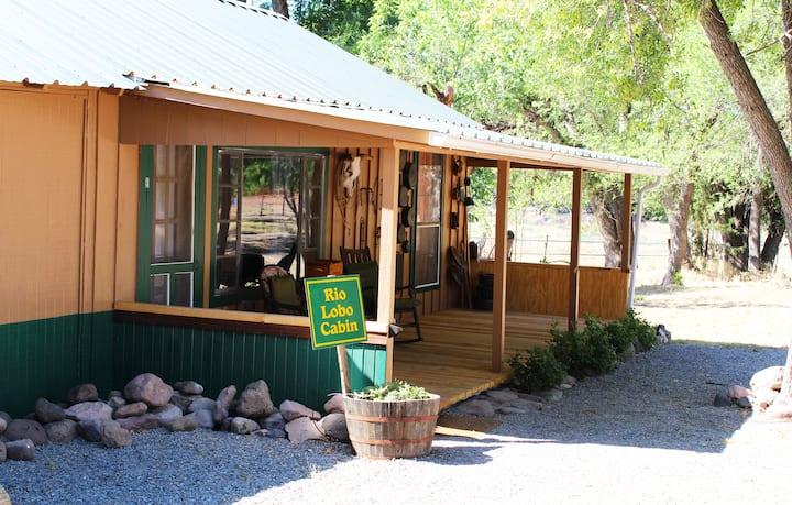Cottage Style Rio Lobo Cabin in Southwest New Mexico Near Creek