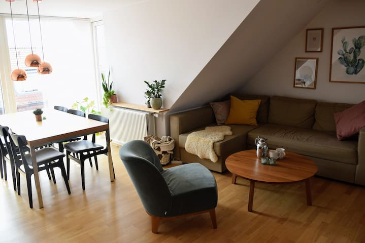 Large, light & lovely apartment in Frederiksbjerg