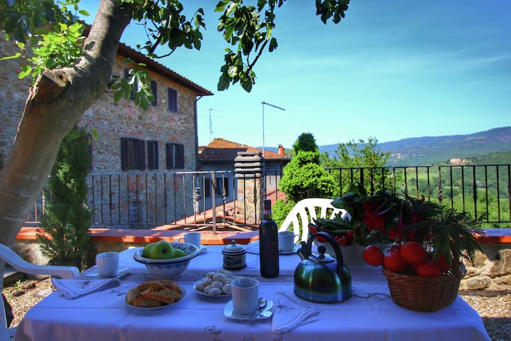Tastefully decorated holiday home on a large estate in the Chianti region
