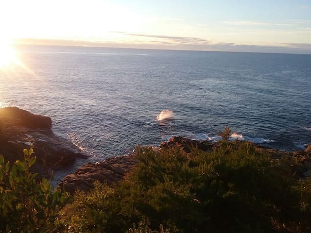 BLUE POINT COTTAGE NO 1 BERMAGUI - Bermagui - Huoneisto