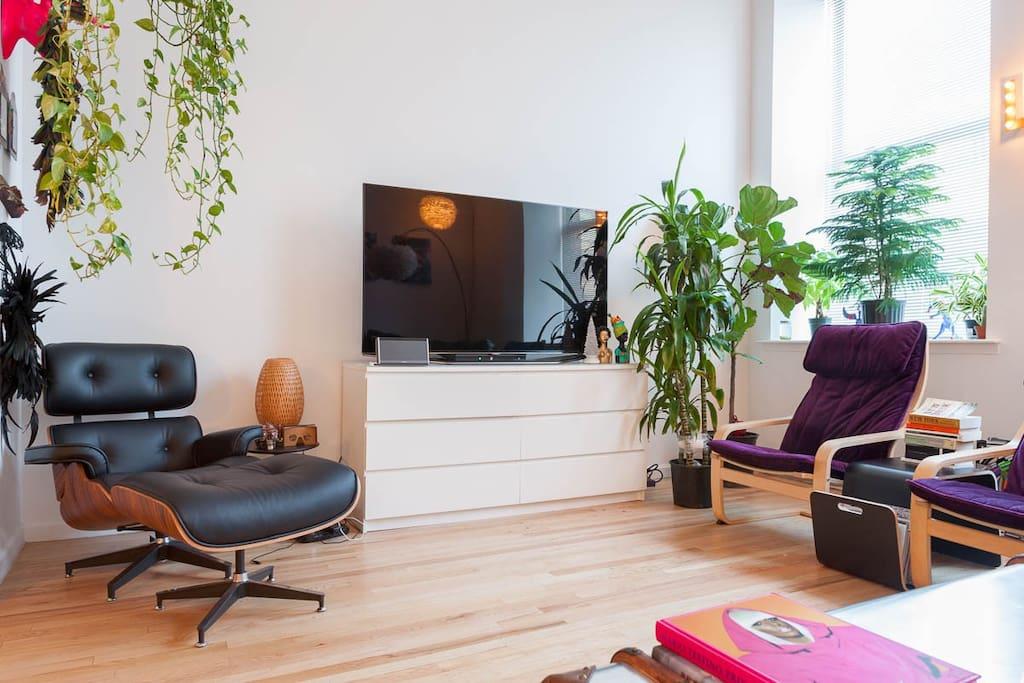 TV. Cable TV. Natural Light. Fantastic living room. Trendy Furniture