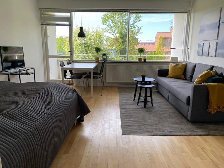 H6, one room apartment in suburb to Copenhagen